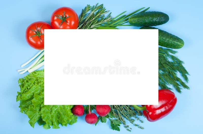 Świezi kolorowi organicznie warzywa chwytali z góry odgórnego widok, mieszkanie kłaść na błękitnym tle Układ z bezpłatną kopią obrazy stock