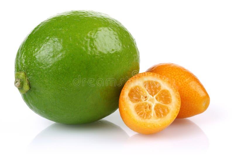 Świezi kumquats i wapno na białym tle obrazy royalty free