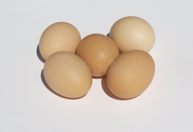 Download Świezi Kurczaków Jajka Na Białym Tle Obraz Stock - Obraz złożonej z jajko, tło: 53781821