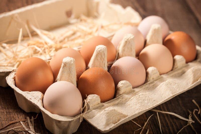 Świezi kurczaków jajka w kartonie zdjęcia stock