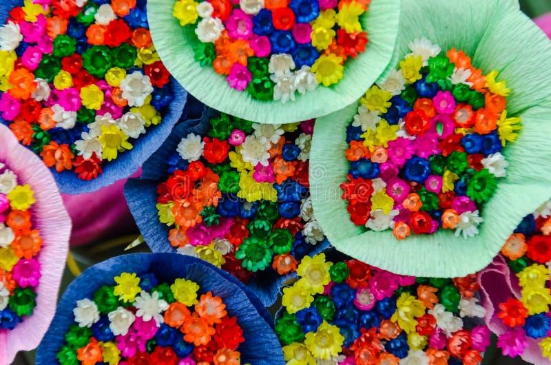 Świezi mali kwiaty obraz royalty free