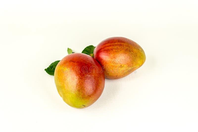 świezi mango zdjęcie royalty free