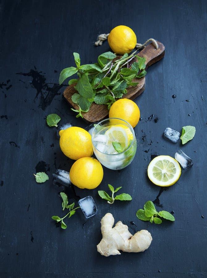 Świezi mojito składniki z cytryną, imbir, nowy ziele opuszczają obrazy stock