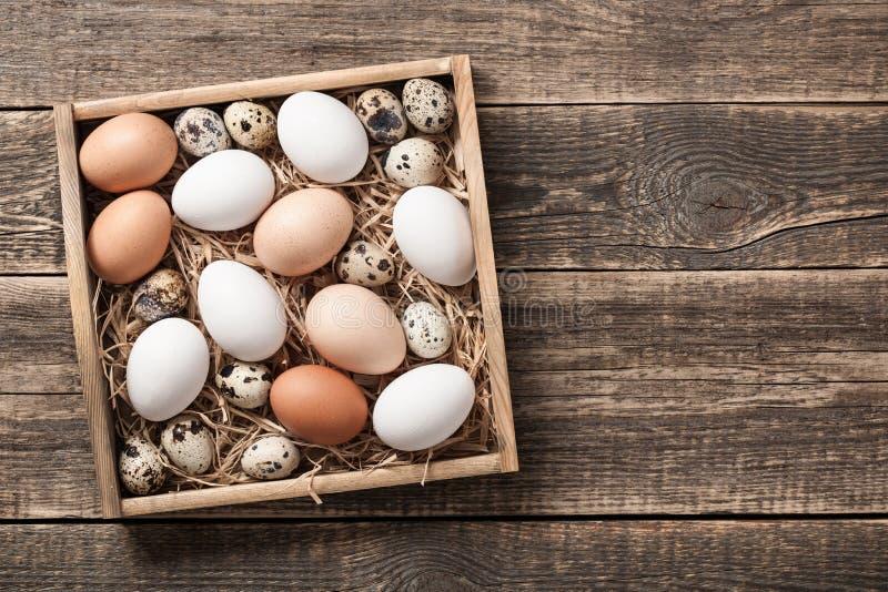 Świezi nieociosani jajka w drewnianym pudełku obrazy royalty free