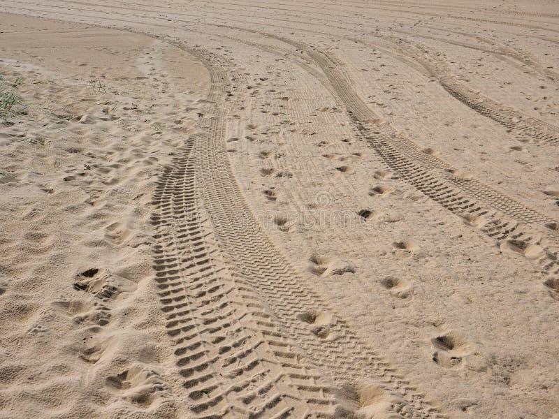 Świezi opona ślada, odciski stopi na Żółtej piasek plaży i fotografia royalty free