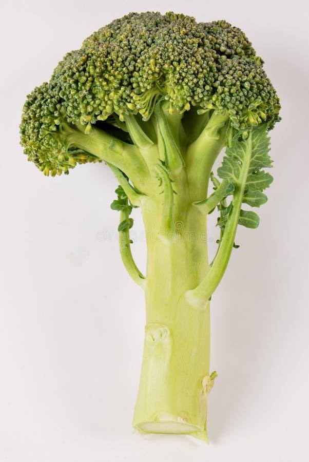 Świezi organicznie brokuły zdjęcie stock