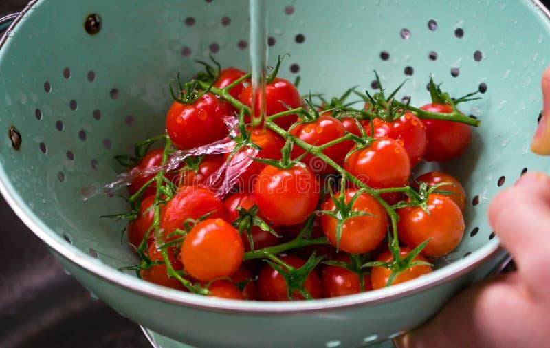 Świezi organicznie czereśniowi pomidory myjący w colander fotografia royalty free