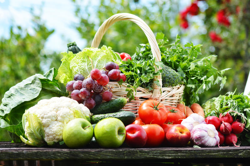 Świezi organicznie warzywa w łozinowym koszu w ogródzie zdjęcie royalty free