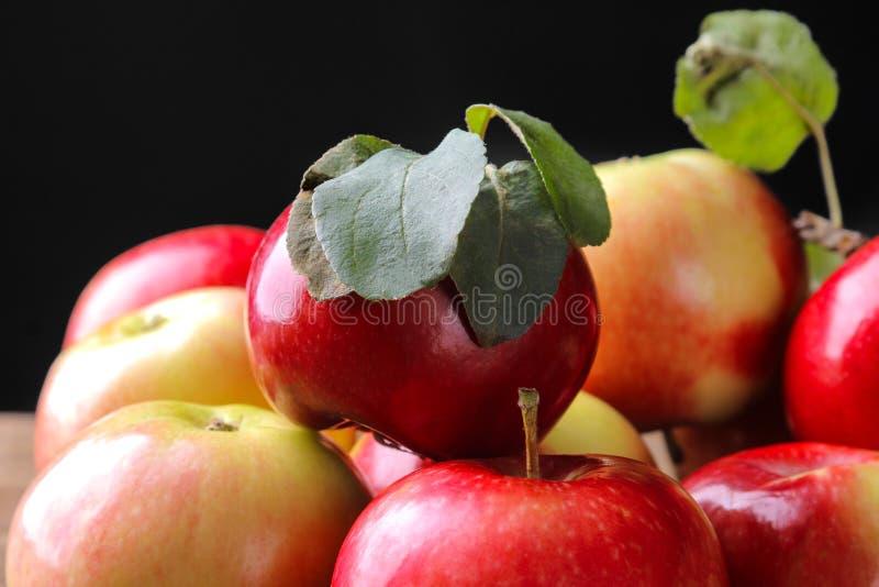 świezi piękni czerwoni jabłka z zielonymi liśćmi na czarnym tle fotografia royalty free