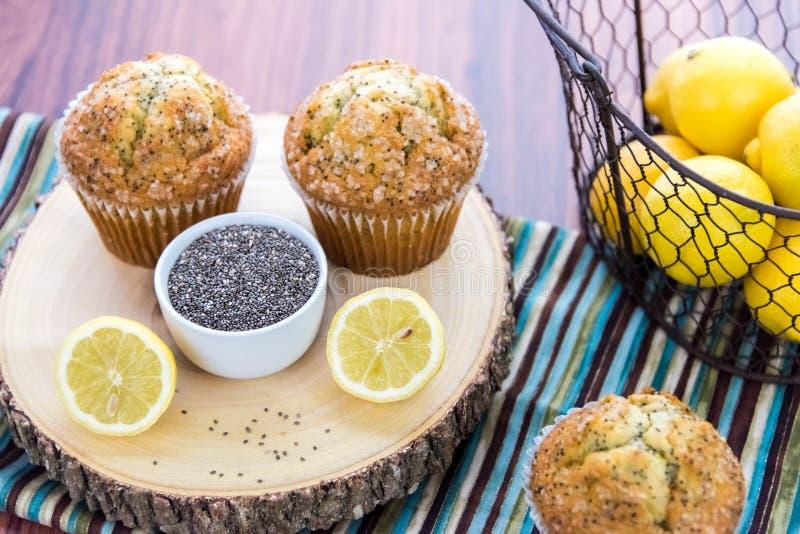 Świezi piec cytryny poppyseed muffins obrazy royalty free