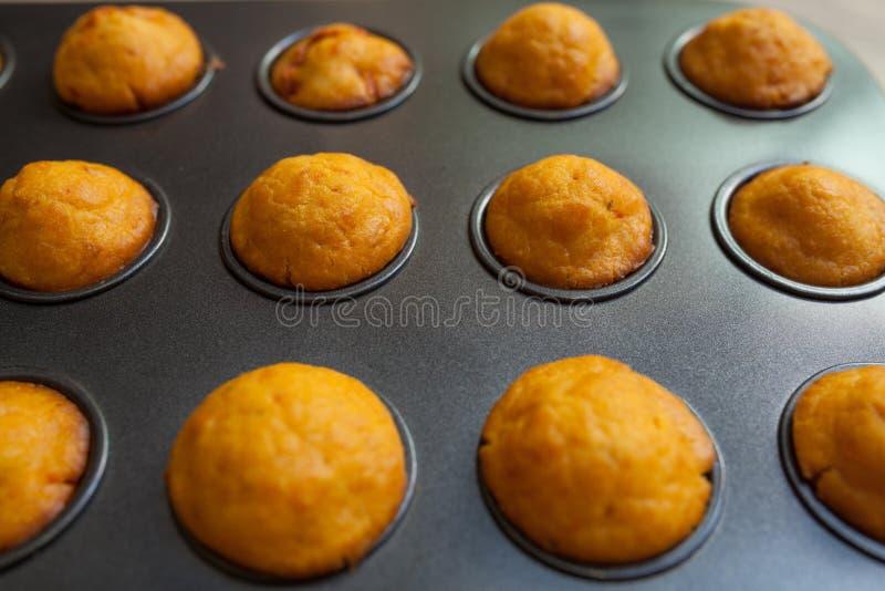 Świezi piec słoni muffins obrazy royalty free