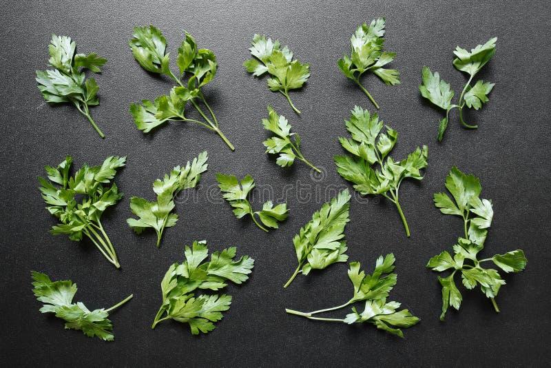 Świezi pietruszka liście na czarnym tle zdjęcie stock