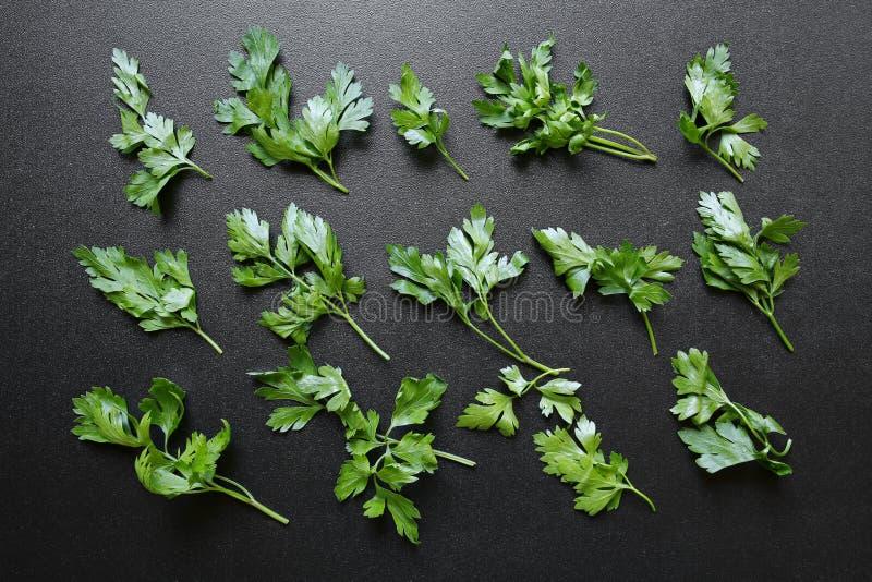 Świezi pietruszka liście na czarnym tle zdjęcie royalty free