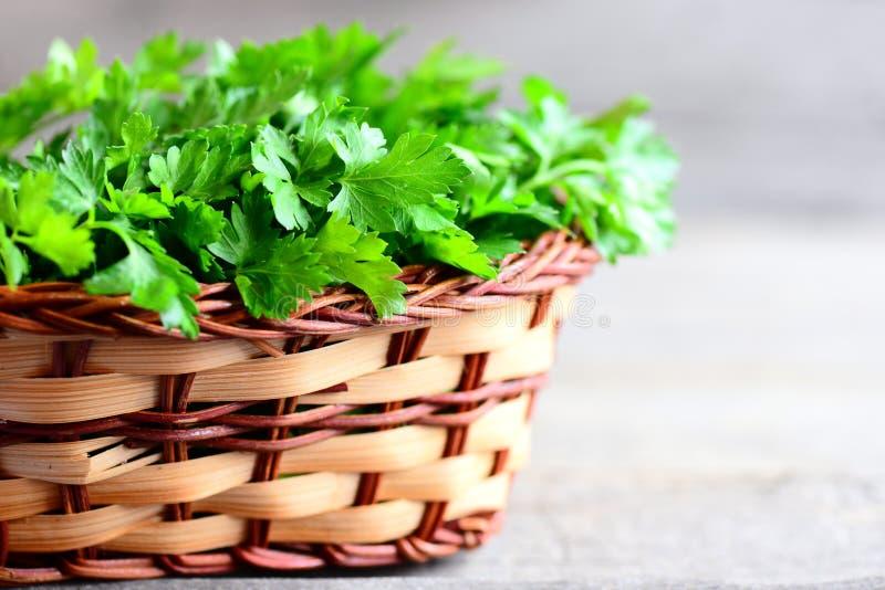 Świezi pietruszka liście w koszu Żywienioniowy źródło przeciwutleniacze, folic kwas, witamina K, witamina C i witamina A, obraz royalty free