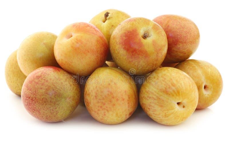 Świezi pluots (Prunus salicina × armeniaca) zdjęcia royalty free