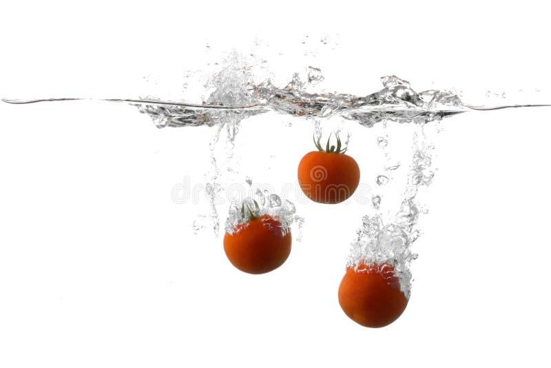 świezi pomidory obrazy royalty free
