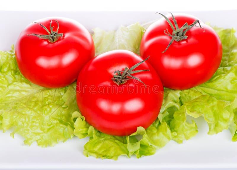 Świezi pomidory i sałatka obrazy stock