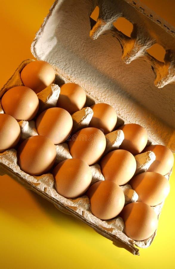 Świezi Rolni jajka zdjęcia royalty free