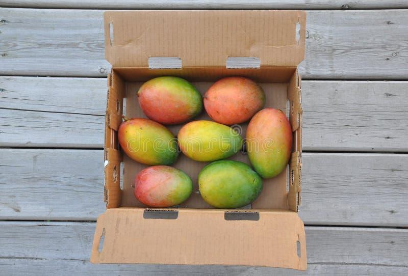 Świezi słodcy mango zdjęcia stock