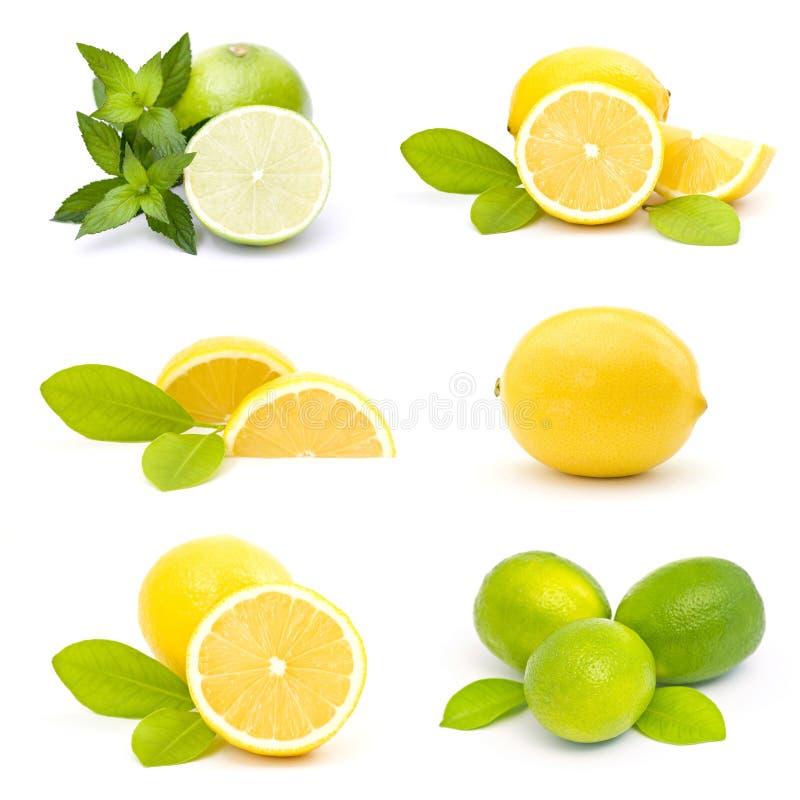 Download świezi Wapno I Cytryny - Kolaż Zdjęcie Stock - Obraz złożonej z citroen, desery: 28973932