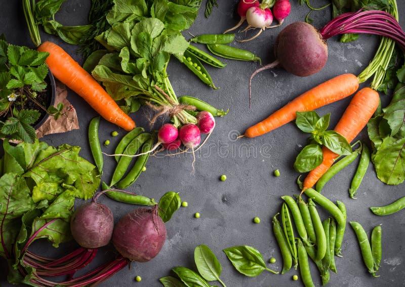 Świezi warzywa dobierający zdjęcie royalty free