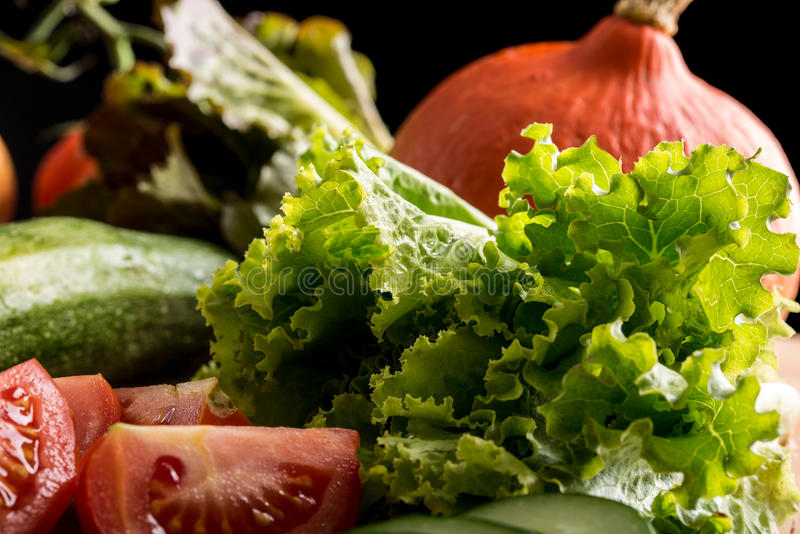Świezi warzywa i sałatkowi składniki zdjęcia royalty free