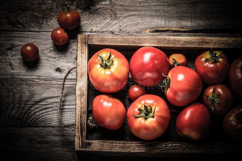 Świezi warzywa w palącej nieociosanej teksturze boksują dla tła Szorstka wietrzej?ca drewniana deska stonowany obraz royalty free