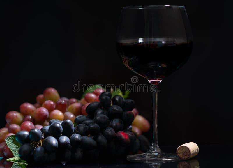 Świezi winogrona z szkłem czerwone wino fotografia royalty free