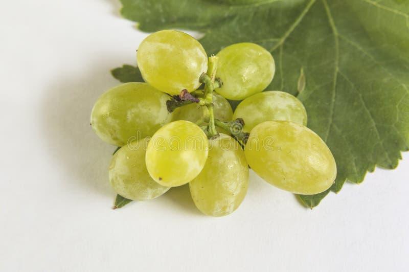 Świezi zieleni winogrona odizolowywający na białym tle zdjęcia royalty free