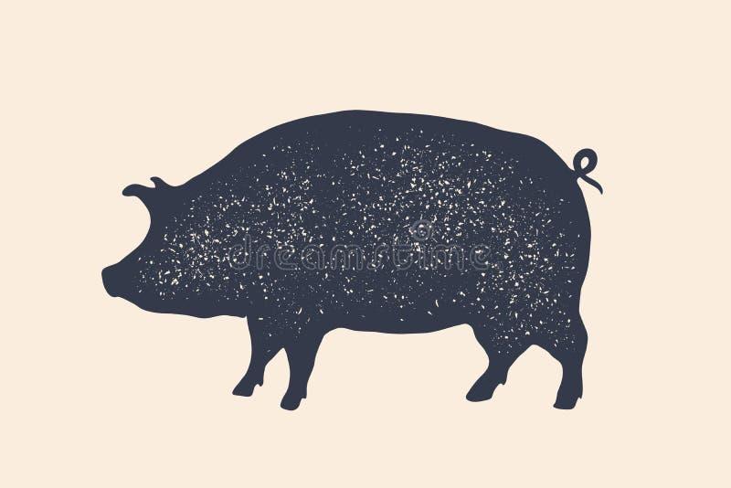 Świnia, wieprzowina Rocznika logo, retro druk, plakat dla Butchery ilustracja wektor
