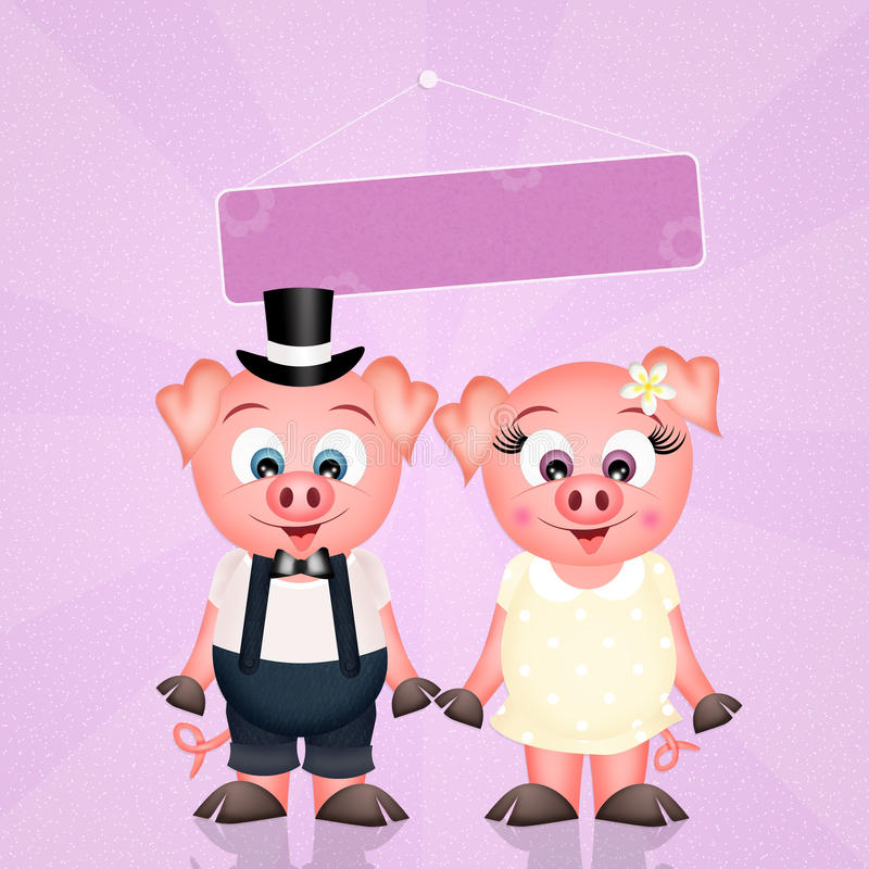 Świnia współmałżonkowie ilustracji