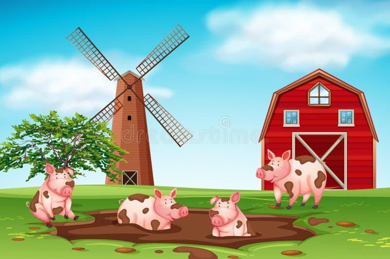 Świnie bawić się w błota gospodarstwa rolnego scenie ilustracja wektor