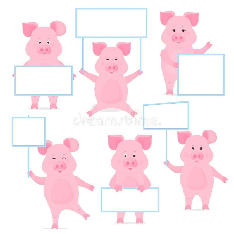 Świnie trzymają puste miejsce znaka, czysty plakat, pusty signboard, sztandar śliczny prosiątko royalty ilustracja