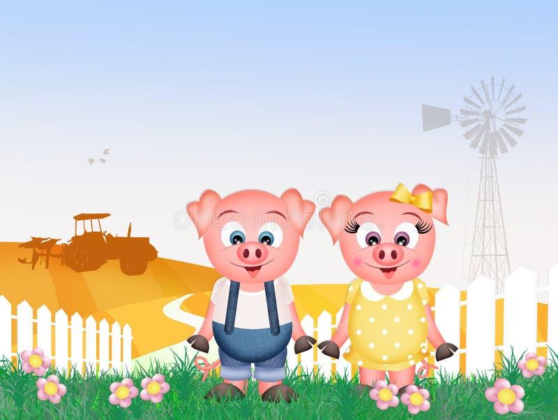 Świnie w gospodarstwie rolnym ilustracja wektor