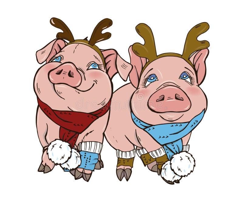 Świnie w zima odzieżowym kapeluszu szaliku i ilustracji
