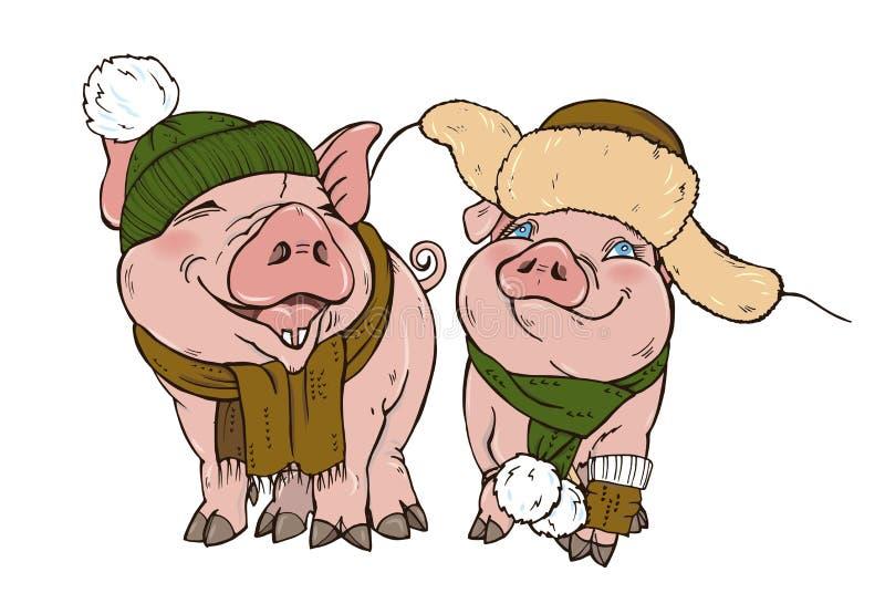 Świnie w zima odzieżowym kapeluszu szaliku i ilustracja wektor
