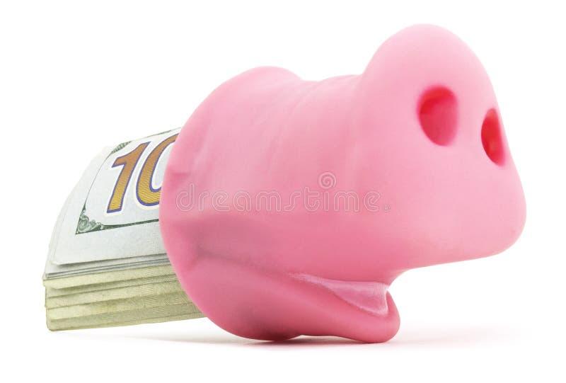 Świniowata dysza Z gotówką zdjęcie stock