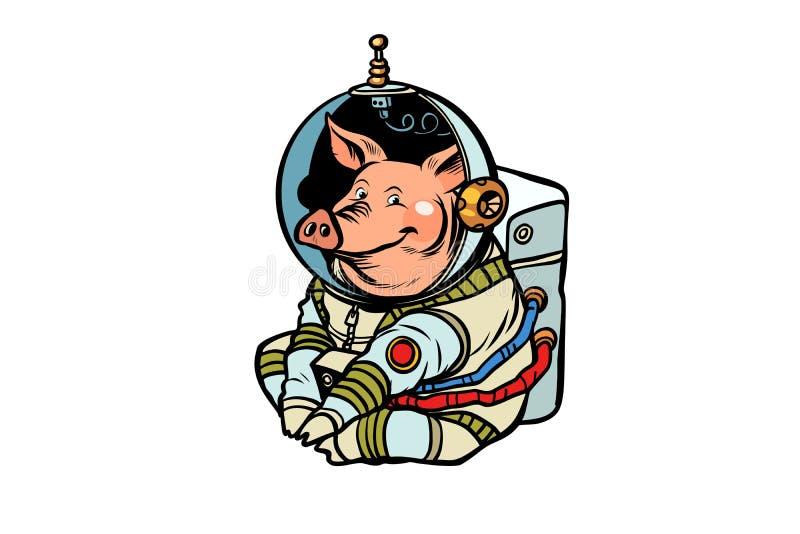Świniowaty astronauta charakter Chiński nowy rok świnia royalty ilustracja