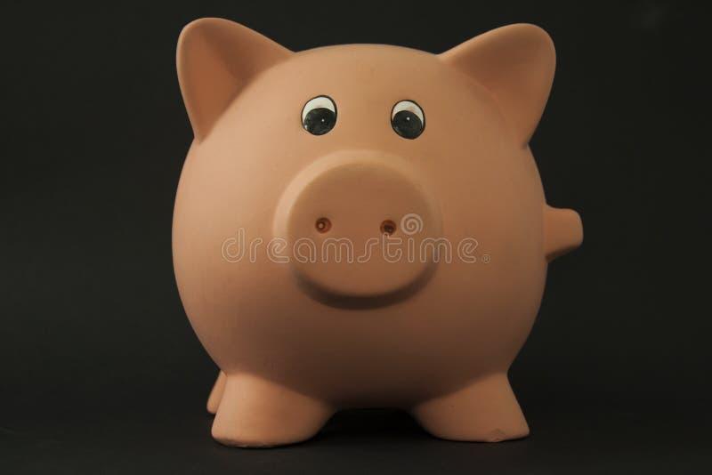 świniowaty prosiątko zdjęcie stock