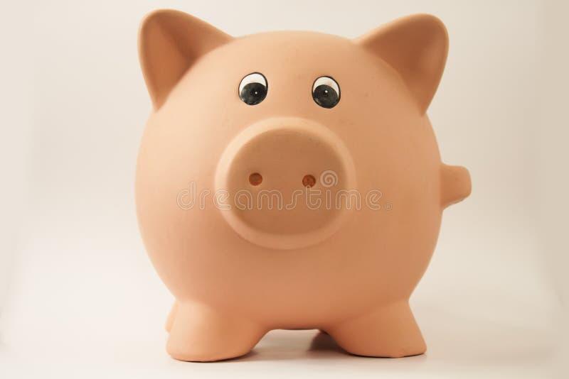 świniowaty prosiątko obraz stock