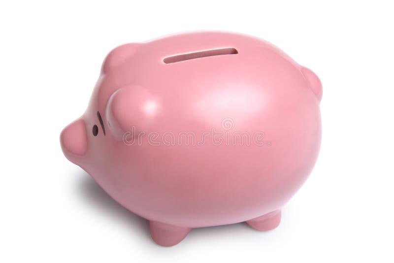 świnka banku fotografia royalty free