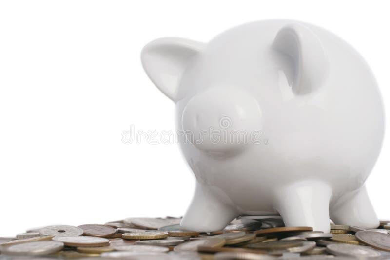 świnka banku zdjęcia royalty free