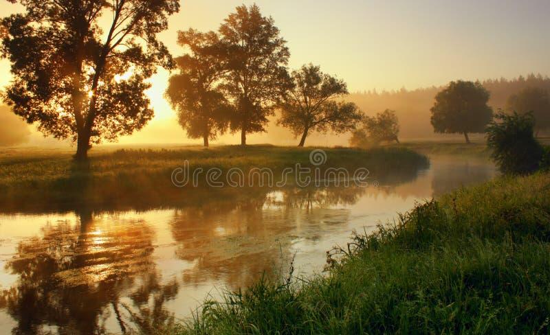 Świt na rzece zdjęcie stock