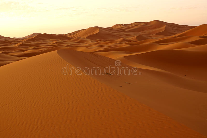 Świt nowy dzień w pustynnych diunach erg w Maroko obraz royalty free