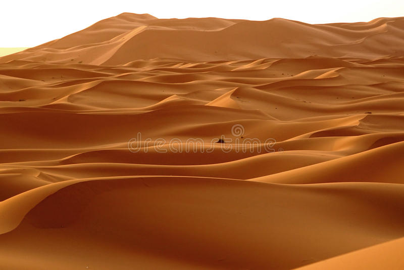 Świt nowy dzień w pustynnych diunach erg w Maroko obrazy stock