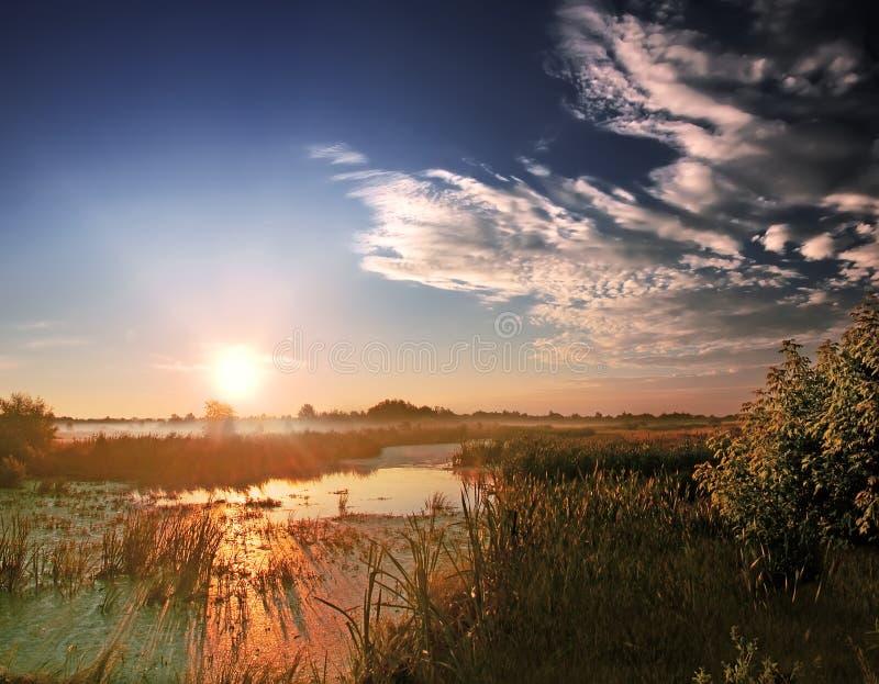 Świt przy rzeką zdjęcia royalty free