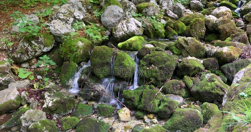 Źródło czysta świeża woda obraz stock