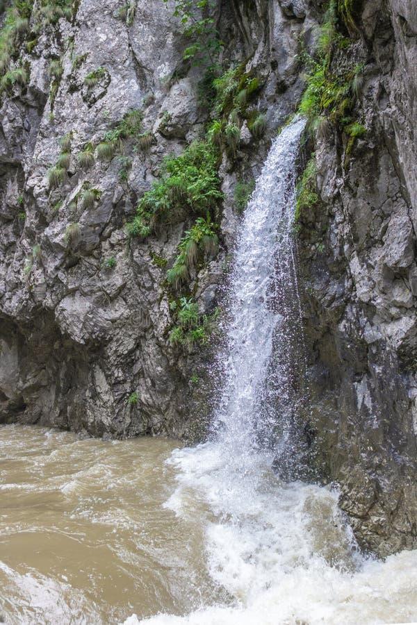 Źródło czysta woda wśród skał zdjęcia royalty free