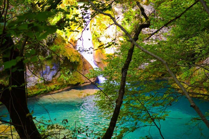 Źródło Urederra lub trasa siklawy Baqueda fotografia stock