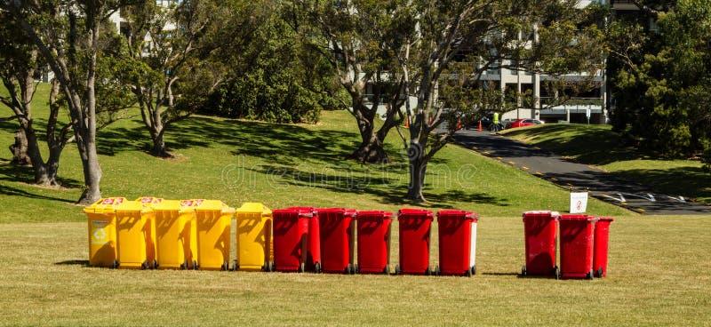 Żółci i czerwoni kosze na śmieci przy Auckland domeną, Nowa Zelandia zdjęcie royalty free
